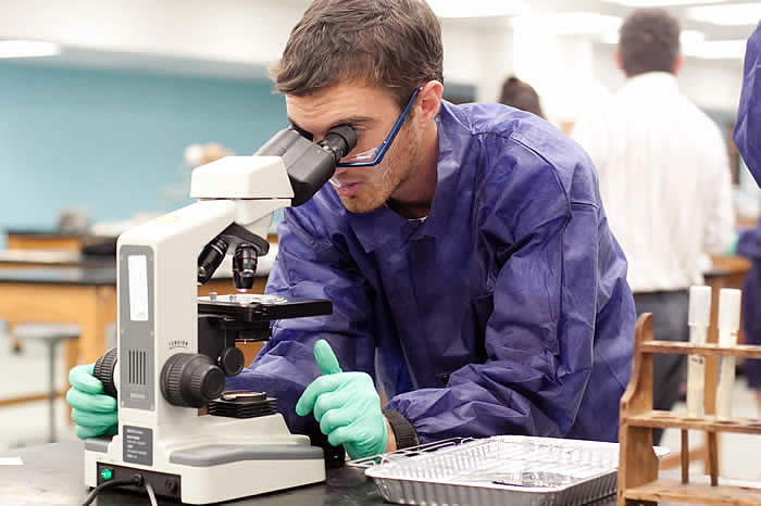 biology degree online Study biology at universities or colleges in united states - find 6 biology degrees to study abroad.